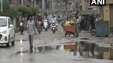Photo of Kashmir readies for Bakrid after protest broken up