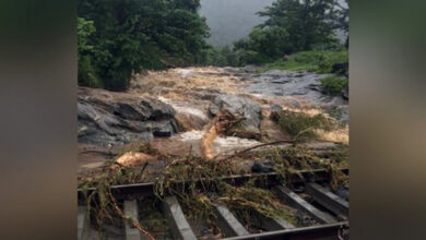 Photo of Death toll mounts to 9 in Kavalappara landslide
