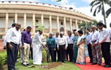 Venkaiah planted a sapling at Parliament House