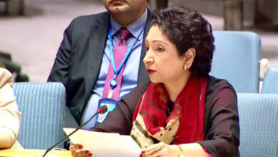 Photo of Voice of Kashmiri people heard at UN: Maleeha Lodhi