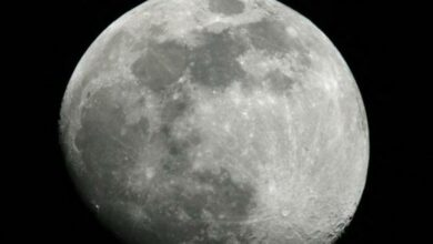 Photo of China's lunar rover finds mysterious substance on moon
