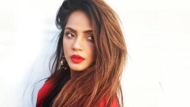 Photo of Neetu Chandra adds oomph to music video