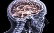 Cellphone breaks not good for your brain: Study