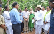 TS: CM directs collectors to prepare plan for revival of forests