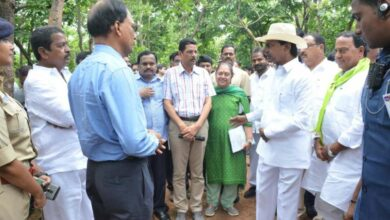 Photo of TS: CM directs collectors to prepare plan for revival of forests