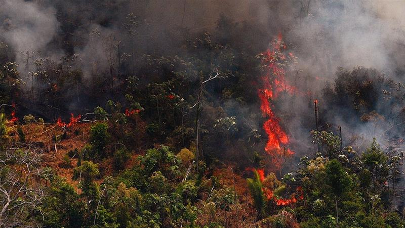 Fire Raging In Amazon Rainforest