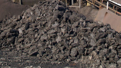 Photo of Substance in brown coal may aid in combating viruses