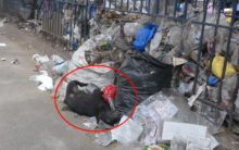 GHMC staff neglect garbage removal at Charminar Road