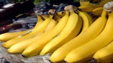 Photo of Sale of bananas banned at Lucknow railway station