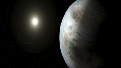 Photo of Are we alone? Study refines search for habitable planets