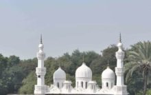 Boycott Pakistani ulama: Maulana Al-Hamoumi