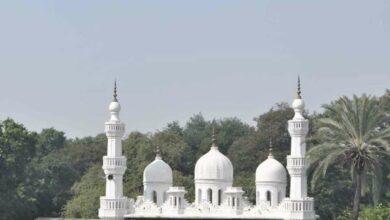 Photo of Boycott Pakistani ulama: Maulana Al-Hamoumi