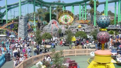 Photo of Theme Parks: City to get soon