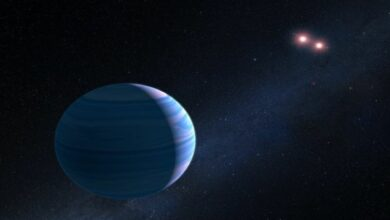 Photo of Astronomers detect water vapour on an exoplanet