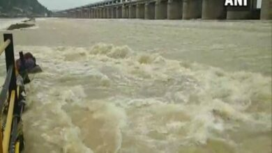 Photo of AP: First level warning continues in Godavari basin