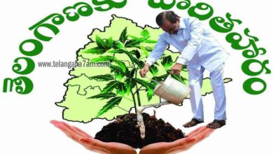 30-day 'Haritha Haram' programme in Telangana villages