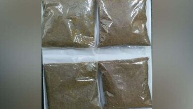 Photo of WB: Narcotic Cell arrests one in raid, seizes drugs