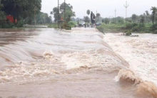 MP: Karbala Bridge submerged due to heavy rains in Sehore