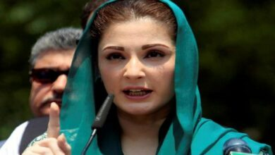 Photo of Passport with court, can't accompany Sharif abroad: Maryam