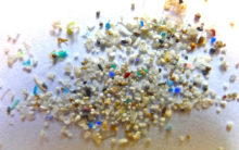 Microplastics are harming our drinking water: Study