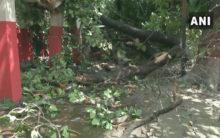 Bihar: 12 dead due to lightning
