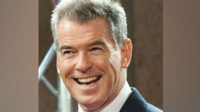 Photo of Pierce Brosnan feels its time to introduce female Bond