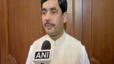 Photo of Article 35A was against Shariah: Shahnawaz Hussain