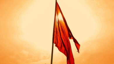 Photo of RSS worried over Muslim birth rate; says it is more than Hindus