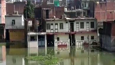 Photo of Flood like situation looms over Prayagraj, people take shelter