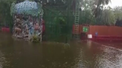 Photo of Nehru Zoological Park Safari closed after heavy rainfall