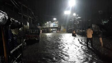 Photo of TS, AP receive excess rainfall during SW monsoon