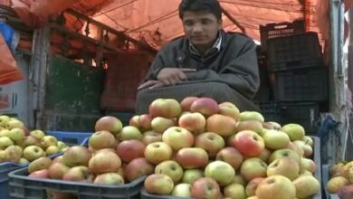 Photo of DC Shopian asks authorities to ensure apple growers reap benefits of MIS