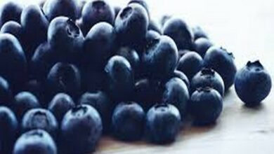 Photo of Blueberry consumption good for heart: Study