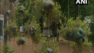 Photo of WB: Forest Range Officer creates a garden using plastic bottles