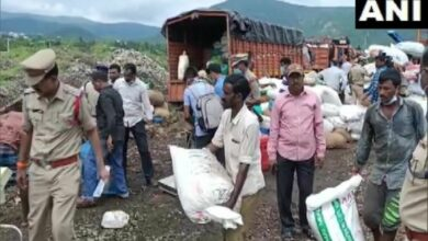 Photo of Visakhapatnam police destroys over cannabis worth Rs 13 crore