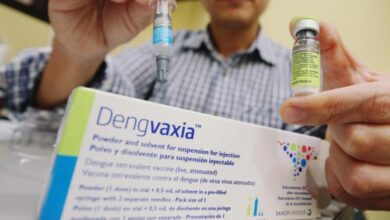 Photo of US develops drug for dengue; India to get it after 10 years