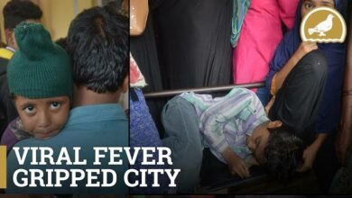 Photo of Hyderabad: Review health situation, oppn leaders tell govt