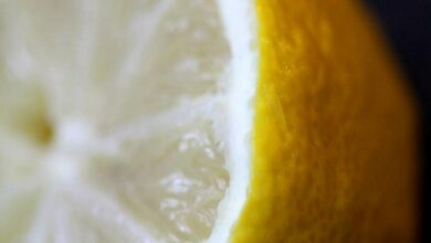 Photo of Smelling lemons makes you feel thinner: Study