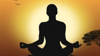 Photo of Heartfulness meditation cultivates gratitude: Study