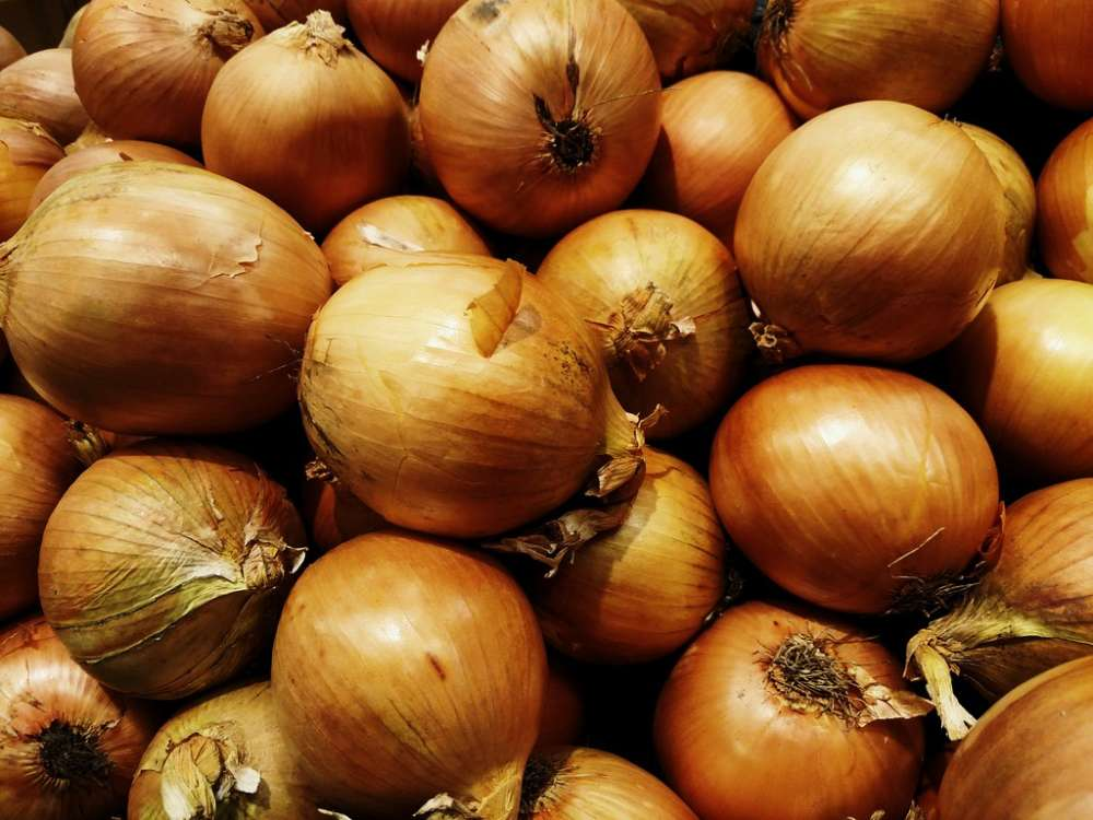 Onion prices up by 300 percent in Hyderabad