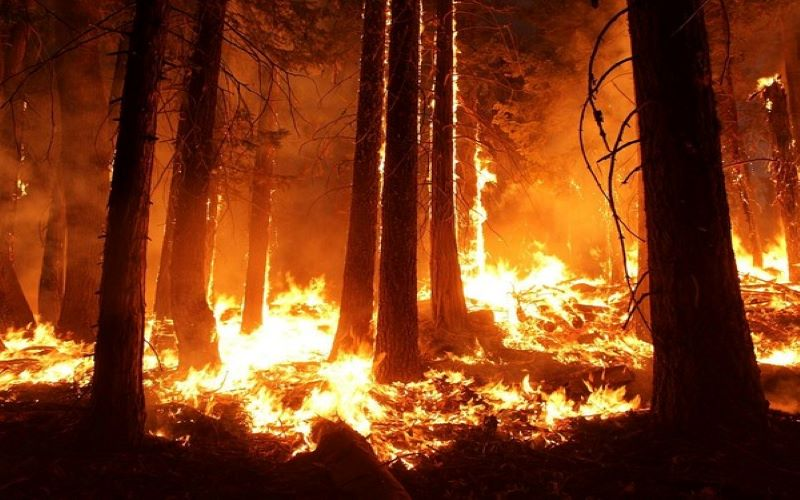 Bildergebnis für California continues to battle wildfires