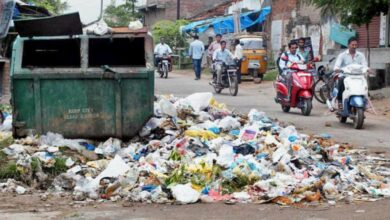 Photo of Overflowing garbage bins and mosquito menace worry residents
