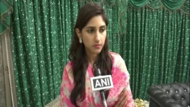 Photo of Aditi Singh features on Congress' star campaigners list