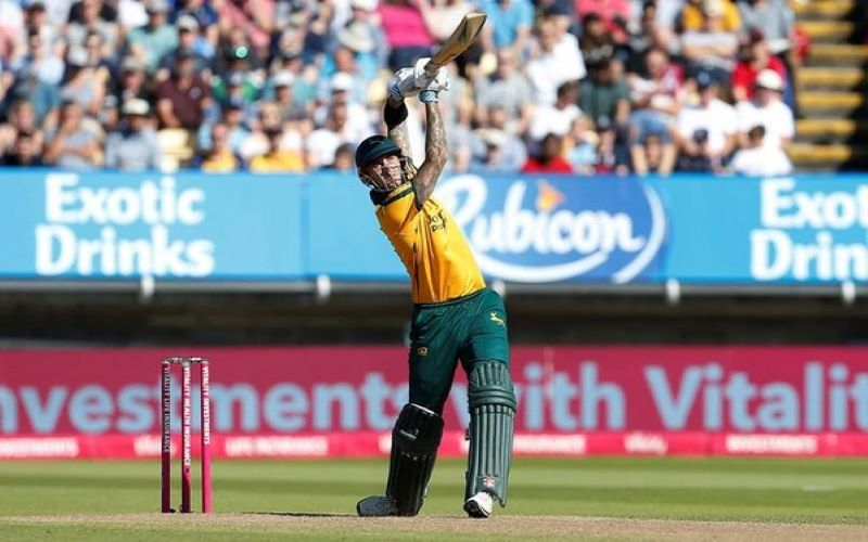 Sydney Thunders signs Alex Hales for BBL