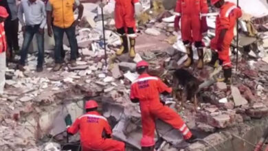 Photo of Building collapses in Vadodara, two dead