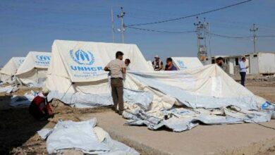 Photo of Syria Kurd families flee to Iraq as array of armies advance