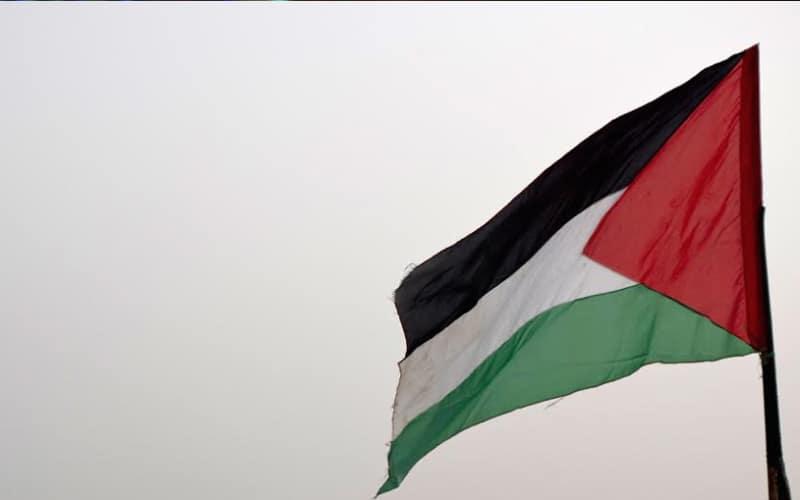 Anti Israel slogans, Palestinian flags raised in Jamia Millia