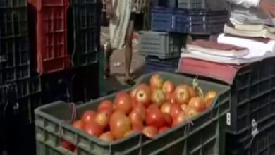 Photo of Delhi: Tomato prices soar as monsoon disrupts supply