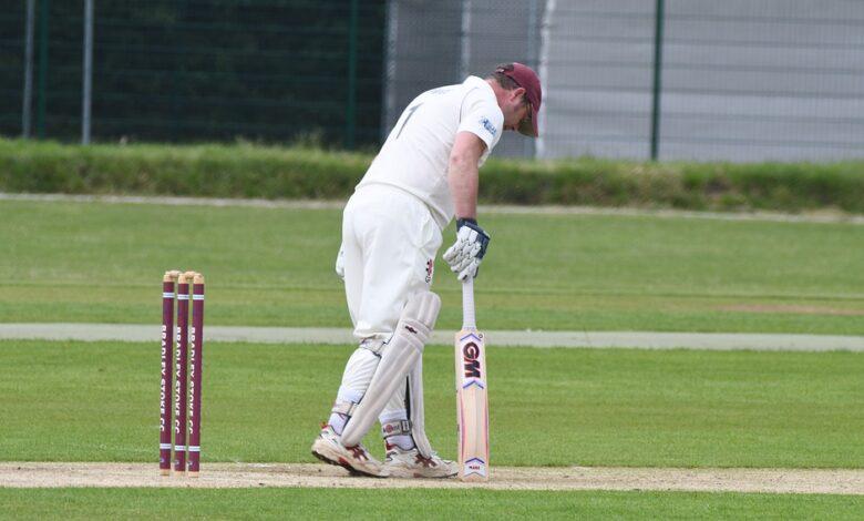 cricket-4357801_960_720