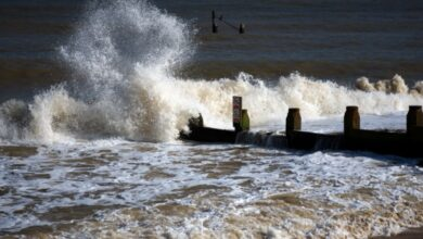 Photo of 300 million face annual coastline flooding by 2050: study
